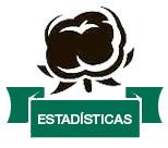 home_estadisticas